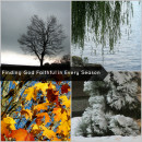 Finding God Faithful in Every Season