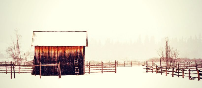 Shed in snow. Photo credit: coffee/pixabay.com