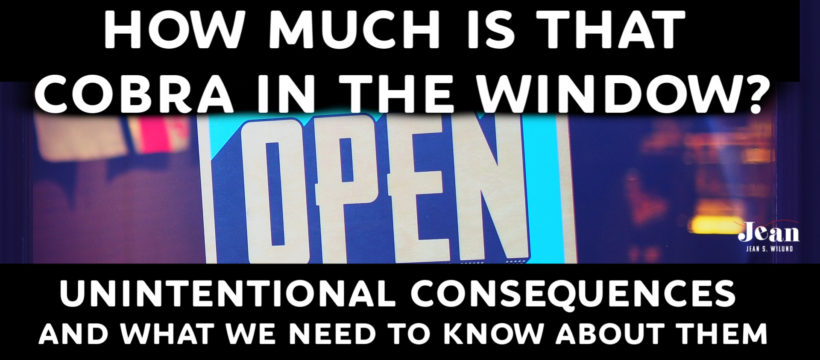 How Much is That Cobra in the Window: Unintentional Consequences and What We Need to know About Them via InspireAFire by Jean Wilund